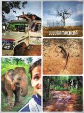 Lunugamvehera National Park - alternative to the famous Yala National Park and its leopards