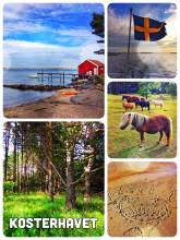 Kosterhavets Nationalpark - hiking along the scenic shore of Sweden's oldest national marine park