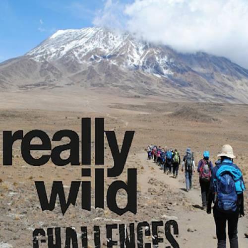 Wild Challenges
